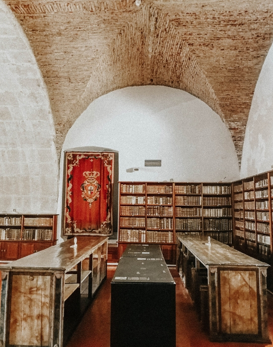 Coimbra università